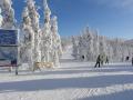 Финляндия Леви