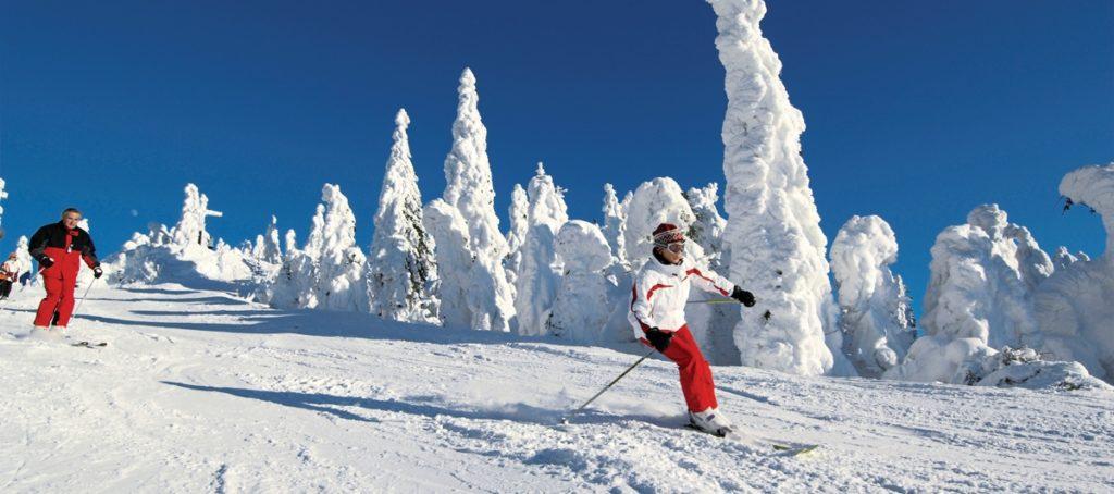 Уроки катания на горных лыжах