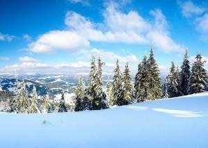 Загородный горнолыжный клуб «Малая медвежка» в Карелии
