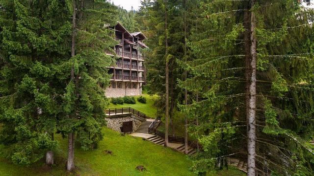 Ana Hotels Bradul: отель в Пояна Брашов