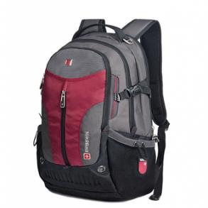 горнолыжный рюкзак Swisswin