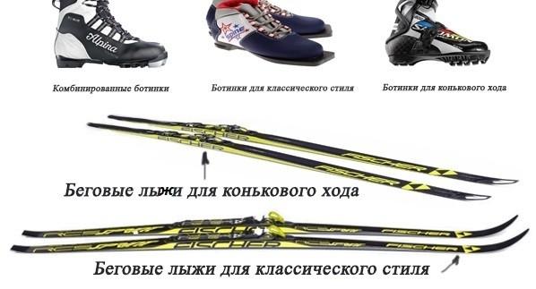 Чем беговые лыжи отличаются от других видов лыж