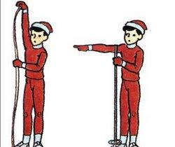 Как подобрать беговые лыжи взрослому или ребенку - важные советы